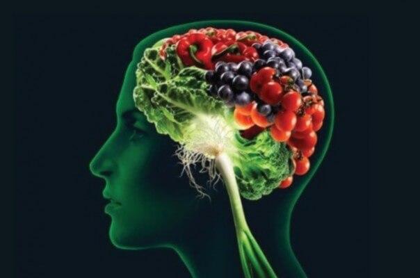 Hrana za mozak i dušu