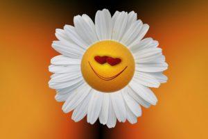 radost zivljenja