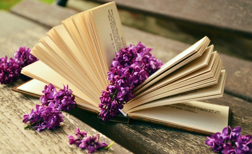 emocionalna inteligencija knjige