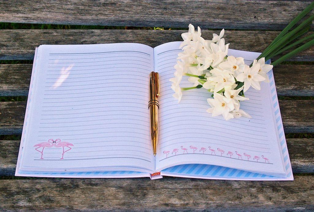 dnevnik emocija
